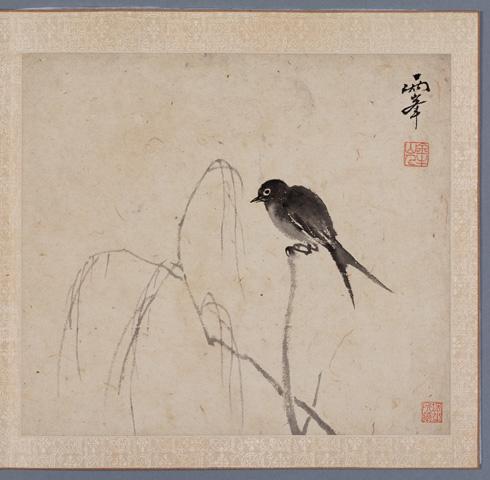 Representations of birds image